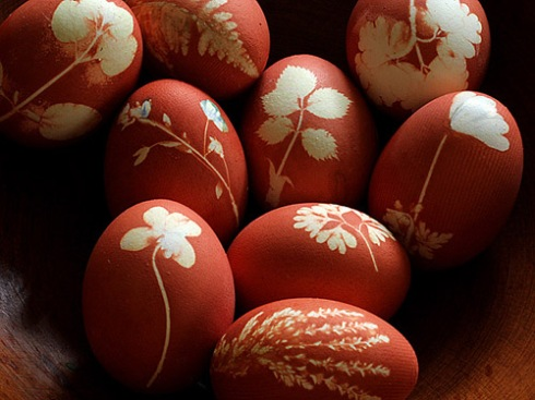 Flowered Eggs